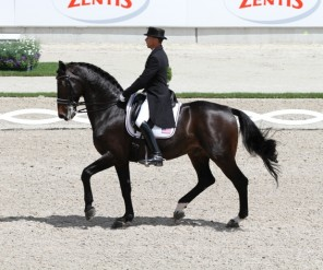 Steffen Peters met Ravel