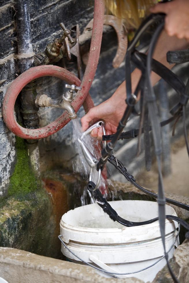 placeholder-tuigage-hoofdstel-schoonmake
